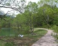 御鹿池の遊歩道