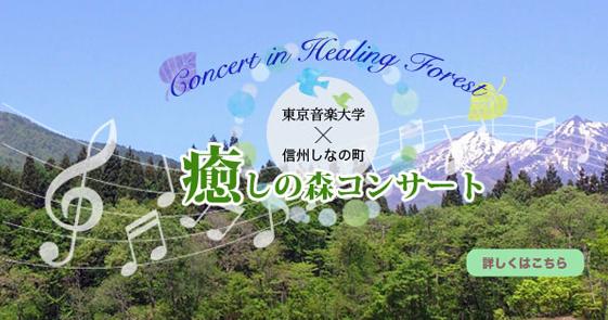 癒しの森コンサート